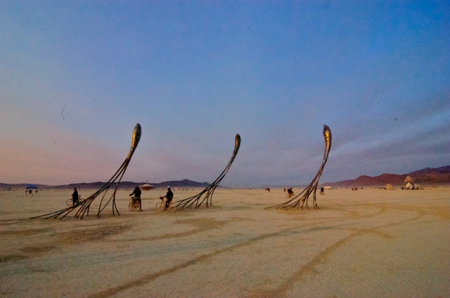 These huge sculptures that seemed to glide across the morning desert. They reminded me of neurons.