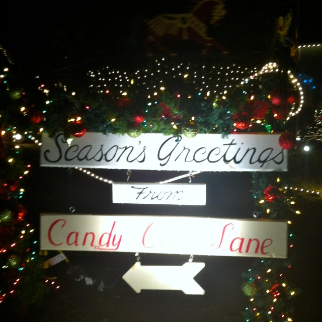 This year some friends introduced us to a street called Candy Cane Lane where all the houses deck out in great Christmas lights. (Sorry for the blurriness of the pictures)