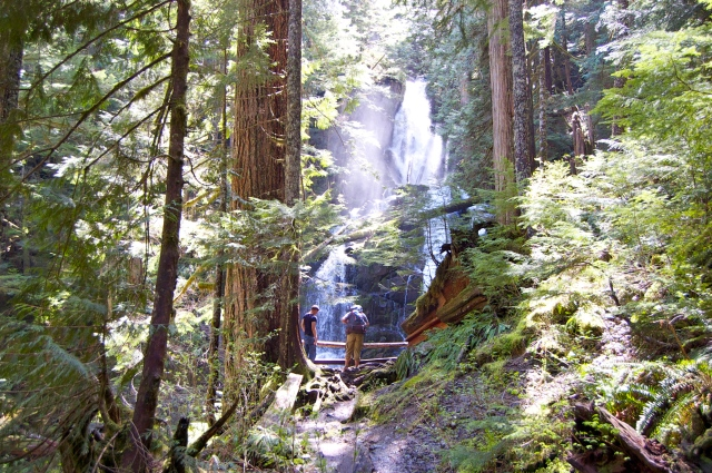 Old growth forests, plenty of moss and waterfalls did not disappoint along the way.