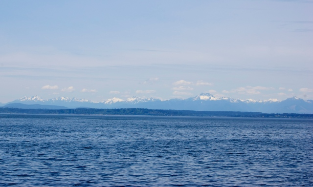 And took in views of Elliot Bay and the Cascades..