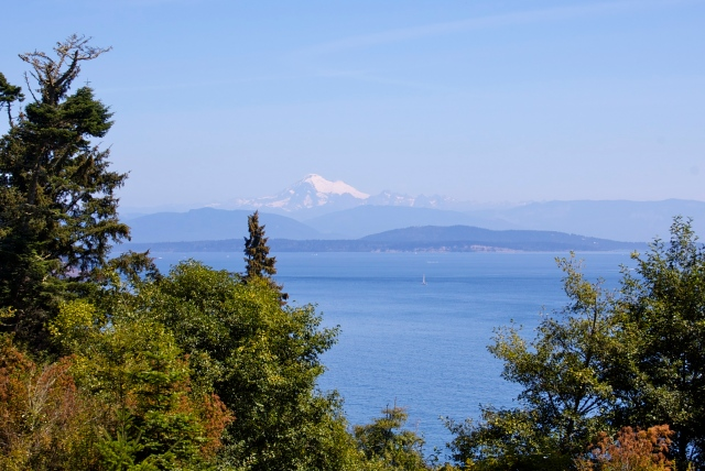 The day had robin-egg blue skies and great views of Mount Baker across the water.