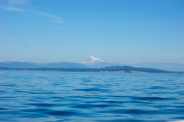 I was sad to leave the island, but the ferry ride back had some spectacular views of Mount Baker and friendly porpoise sightings to smooth the way.