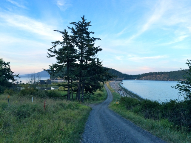 Walking back to the cabin after the rehearsal dinner took a little extra time - there are no road signs on the island, so we got a bit lost.