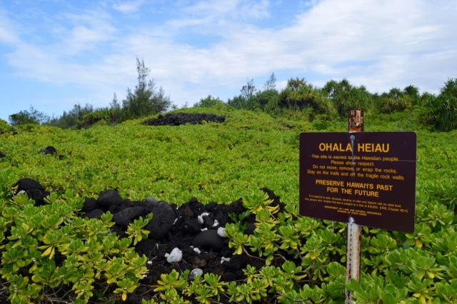 We found a smaller heiau in ruins out on our hike.